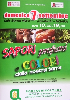 sapori e colori enogastronomic ebvent in novara sala borsa piazza martiri 7th september 2008